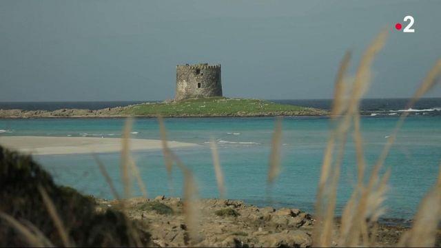 Méditerranée : à la découverte de l'île d'Asinara, entre la Corse et la Sardaigne