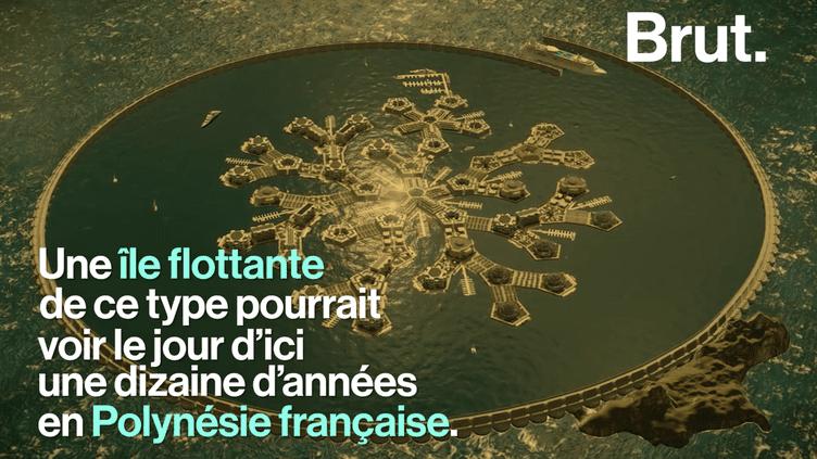Les autorités de Polynésie française et le Seasteading Institute discutent sérieusement d'une concession maritime pour des plateformes flottantes aux larges des rivages polynésiens.  (Brut)