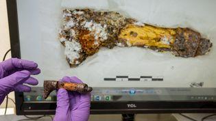 Un chercheur du C2RMF montre un manche de poignard découvert lors des fouilles de Lavau (Aube). La photographie sur l'ordinateur l'objet dans son état initial.  (Denis Gliksman, Inrap)