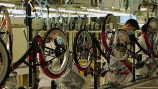 Portugal : le plus grand producteur de vélos d'Europe (France 2)
