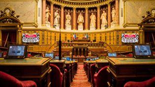 L'hémicycle du Sénat au Palais du Luxembourg, à Paris. (Jean-François Fernandez / Radio France)