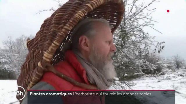 """Jura : rencontre avec l'herboriste Stéphane Meyer, surnommé """"le druide"""""""