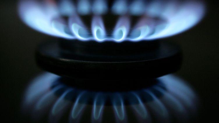 Le Médiateur national de l'énergie a vu le nombre de ses saisines augmenter de 14% en 2011, à 8 044, par rapport à l'année 2010. (PATRICK PLEUL / DPA / MAXPPP)