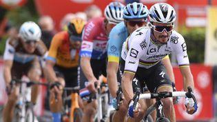 Julian Alaphilippe court son premier Tour des Flandres. (DAVID STOCKMAN / BELGA / AFP)