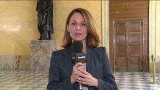 La députée PCF Elsa Faucillon (FRANCEINFO)