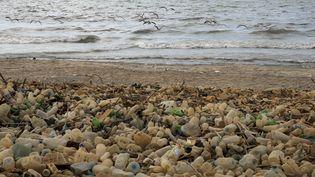 Des détritus plastiques sur une plage de Beyrouth (Liban), le 22 septembre 2016. (JOSEPH EID / AFP)