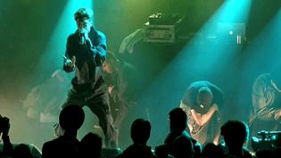 Les Dead Obies ont électrisé le public des Trans Musicales.  (France 3)