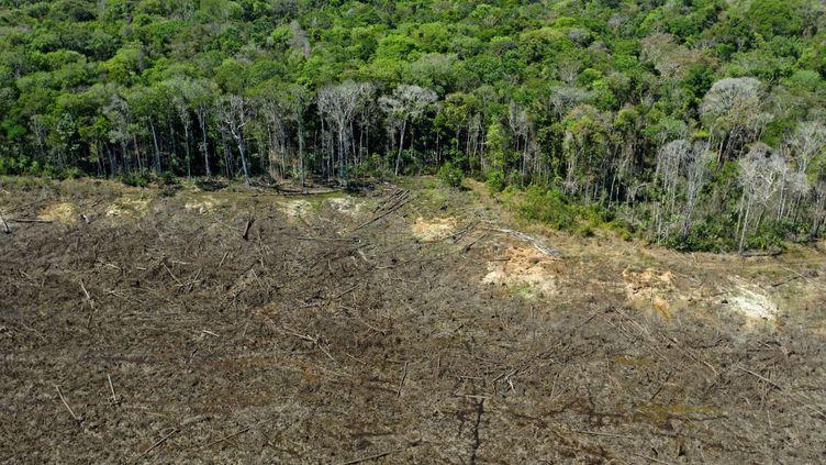 Vue aérienne d'une partie de l'Amazonie déforestée au Brésil en août 2020. (Florian PLAUCHEUR / AFP)