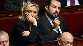 La président du Rassemblement national (RN), Marine Le Pen, et le député RN du Nord, Sébastien Chenu, le 6 novembre 2018 à l'Assemblée nationale. (LIONEL BONAVENTURE / AFP)