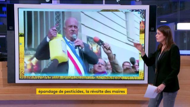 Pesticides : leur utilisation déchire la France