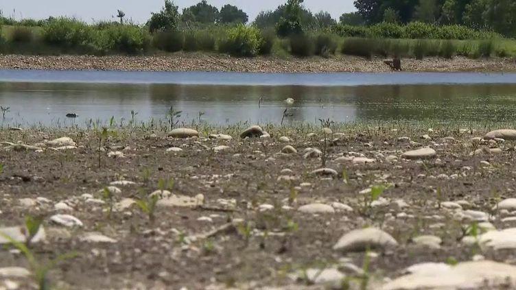 Alors que les météorologues annoncent un été chaud et sec, on s'inquiète déjà des risques de sécheresse dans près de la moitié du territoire. Plus de 50 départements ont des profils à risques, en particulier dans l'Est. (France 2)