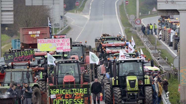 Des agricultuers manifestent sur la rocade de Rennes, le 17 février 2016. (JEAN-FRANCOIS MONIER / AFP)