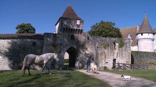 Ancien repère de trafics et de pillages, le château de Bridoire s'est transformé en lieu féérique sous l'impulsion de la famille Guyot. (France 3 Nouvelle-Aquitaine)