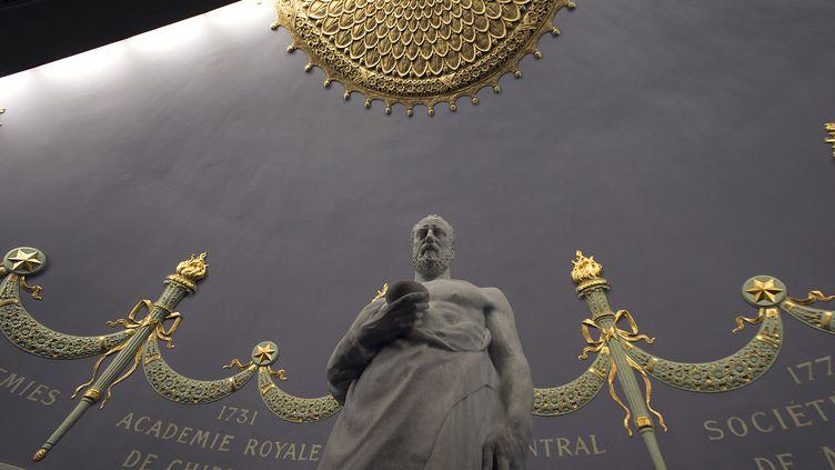 La statue d'Hippocrate à l'Académie nationale de médecine, à Paris. (JOEL SAGET / AFP)