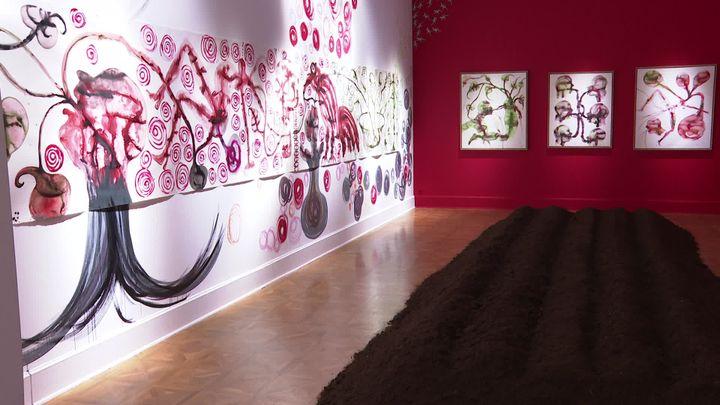 De la terre à même le sol en plein milieu de l'exposition... L'œuvre de Barthélémy Toguo peut parfois être déroutante. (France 3 Côte d'Azur)