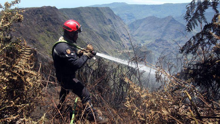 Un pompier lutte contre l'incendie qui fait rage sur l'île de La Réunion, au Cirque de Mafate, le 1er novembre 2011. (RICHARD BOUHET / AFP)