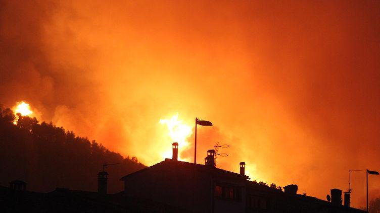 Les flammes près de la ville de La Jonquera (Espagne), le 22 juillet 2012. (JORDI RIBOT PUNTI / AFP)