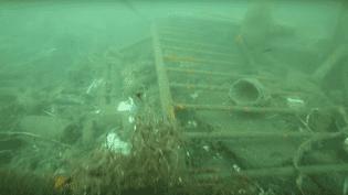 L'ONG Sea Shepherd France a effectué une plongée dans le Vieux-Port de Marseille (Bouches-du-Rhône), pour les besoins de cette vidéo, diffusée le 5 août 2015. (SEA SHEPHERD FRANCE - OFFICIEL / YOUTUBE)