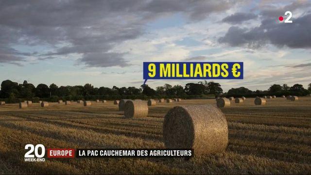 Europe : la PAC, cauchemar des agriculteurs