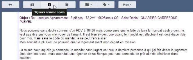 Capture d'écran (FRANCETV INFO)