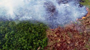 Vue aérienne d'un feu de forêt à Ramal do Cinturao Verde, dans la forêt amazonienne, au Brésil, le 4 août 2020. (CHICO BATATA / AFP)