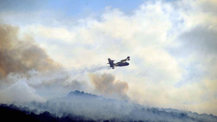 Un violent incendie a parcouru environ 200 hectares de garrigue et de forêt de chênes samedi 21 juillet à Bouletère (Pyrénées-Orientales). (FREDERIC VENNARECCI / MAXPPP)