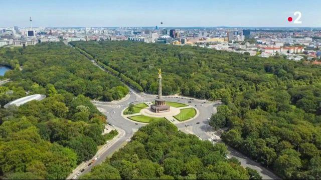 Berlin : une forêt dans la ville