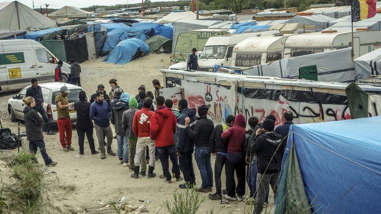 Des migrants font la queue pour obtenir de la nourriture, dans la jungle de Calais (Pas-de-Calais), mercredi 18 mai. (PHILIPPE HUGUEN / AFP)