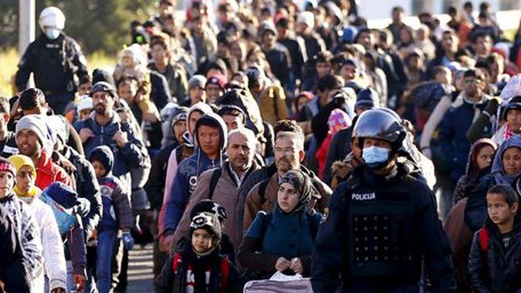 Dans le village slovène de Sentilj, des migrants sont guidés par la police vers la frontière autrichienne, le 18 novembre 2015. (REUTERS - Leonhard Foeger)