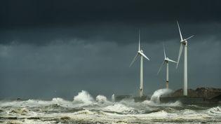 Des éoliennes au large de Boulogne-sur-Mer (Pas-de-Calais), le 10 août 2019. (MISCHA KEIJSER / CULTURA CREATIVE / AFP)