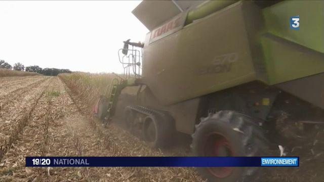 Glyphosate : les agriculteurs montent au créneau contre la décision d'Emmanuel Macron