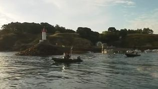 Bretagne : le thon rouge est de retour (FRANCE 3)