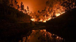 Un spectaculaire incendie s'est déclaré, dans la nuit du 17 au 18 juin, à Penela, dans le centre du Portugal. (PATRICIA DE MELO MOREIRA / AFP)