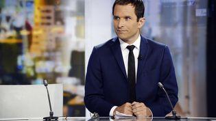 L'ex-ministre de l'Education nationale Benoît Hamon, le 25 août 2014 sur France 2. (BERTRAND GUAY / AFP)