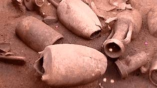 Les caves à amphores découvertes depuis le 19e siècle sur le site archéologique de Châteaumeillant (Cher) sont spécifiques aux Bituriges, un peuple de Gaule celtique  (Capture d'écran / Culturebox)