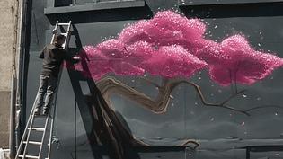 L'un des 35 artistes de Street Art au travail à Saint-Brieuc  (France 3 Capture d'écran)