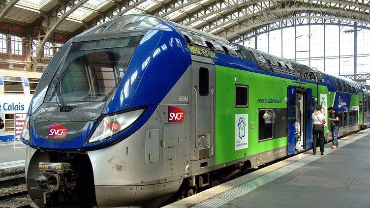 Le mouvement des cheminots contre la réforme ferroviaire doit se poursuivre au moins jusqu'au 28 juin 2018. (MAXPPP)