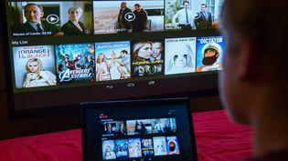 Un spectateur devant le site de la plateforme de streaming Netflix (2014). (BERND VON JUTRCZENKA / DPA)