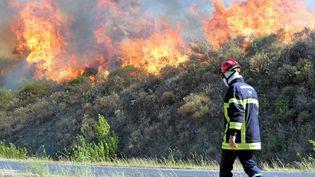 Un pompier lors de l'incendie de Gabian dans l'Hérault, le 10 août 2016. (MAXPPP)