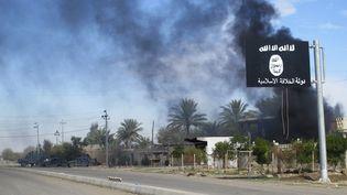 Un drapeau du groupe Etat islamique flotte près de la ville de Saadiya (Syrie), le 24 novembre 2014. (REUTERS)