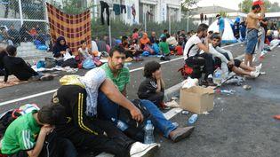 Des migrants attendent à la frontière serbo-hongroise le 16 septembre 2015. (ELISE LAMBERT/FRANCETV INFO)