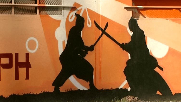La fresque de Termic sur les murs l'association Sonograph à Amiens  (France3 / Culturebox)