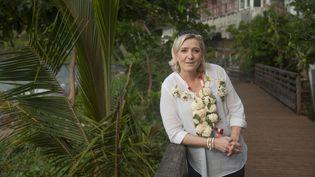 Marine Le Pen, présidente du Front national à Mayotte, le 30 novembre 2016. (DAVID LEMOR / AFP)