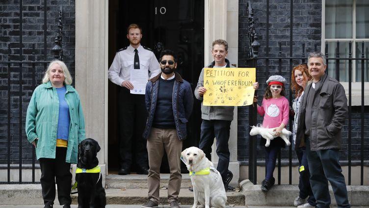 Manifestation de chiens et de leurs maîtres devant le 10 Downing Street à Londres contre le Brexit, le 7 octobre 2018. (TOLGA AKMEN / AFP)