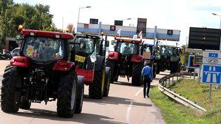 Un convoi de tracteurs près de Reims (Marne) en direction de Paris, le 2 septembre 2015, à la veille d'une grande manifestation d'agriculteurs dans la capitale. (FRANCOIS NASCIMBENI / AFP)