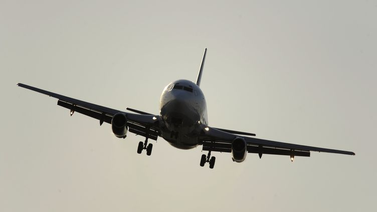 Un Boing 737, le 21 août 2008. (JUAN MABROMATA / AFP)