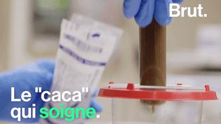 Aujourd'hui la matière fécale est de plus en plus utilisée pour soigner les malades. Par gélules, colonoscopie ou par des tubes passants pas le nez, les méthodes de transplantation sont diverses. (Brut)
