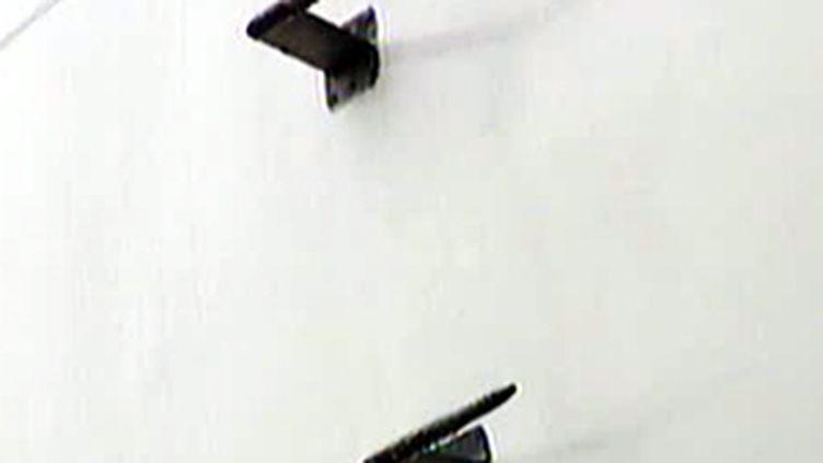 Des sondes Pitot servent à mesurer la vitesse en vol. (© France 2)
