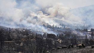 L'incendie Cranston a ravagé 5 000 hectares en Californie (Etats-Unis), le 26 juillet 2018. (MARIO TAMA / GETTY IMAGES NORTH AMERICA / AFP)