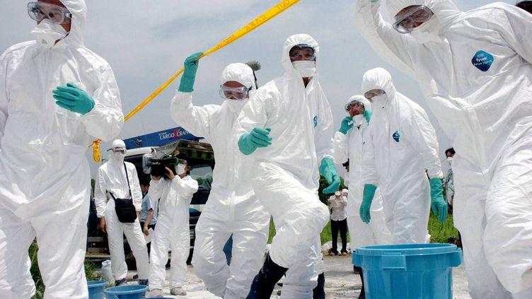 Des équipes médicales japonaises inspectent une ferme de poulets à touchée par la grippe aviaire en 2005. (STR / POOL)